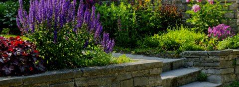 Projektowanie i pielęgnacja ogrodów